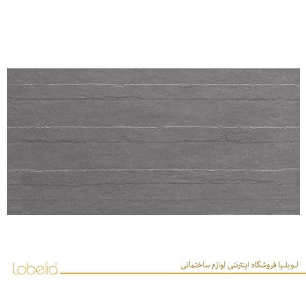 lobelia Robson-Dark-Gray-Concept-60x120-2-300x150 02122518657 www.lobelia.co