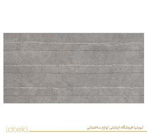 lobelia Robson-Light-Gray-Concept-60x120-2-300x150 رابسون