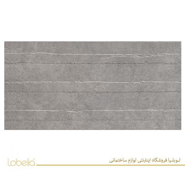 lobelia Robson-Light-Gray-Concept-60x120-2-300x150 02122518657 www.lobelia.co