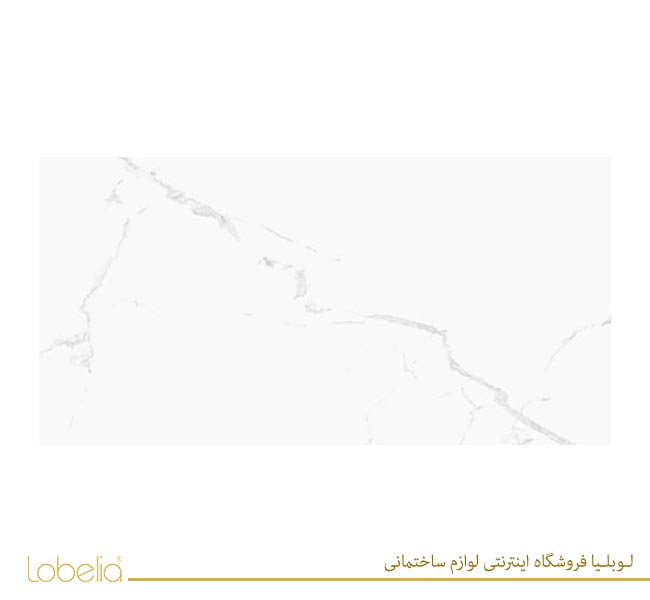 لوبلیا کاشی تبریز مرکزیArben-Polished-Glossy-80x16022-1 02122327211 www.lobelia.co